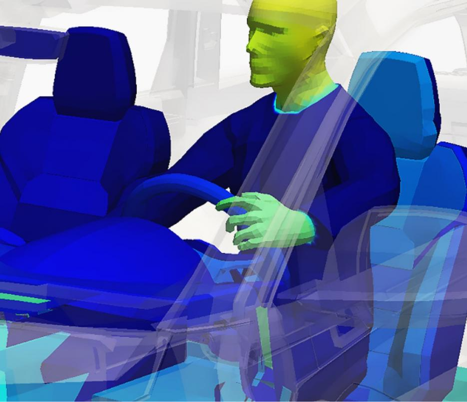 thermal simulation model of human in automotive cabin
